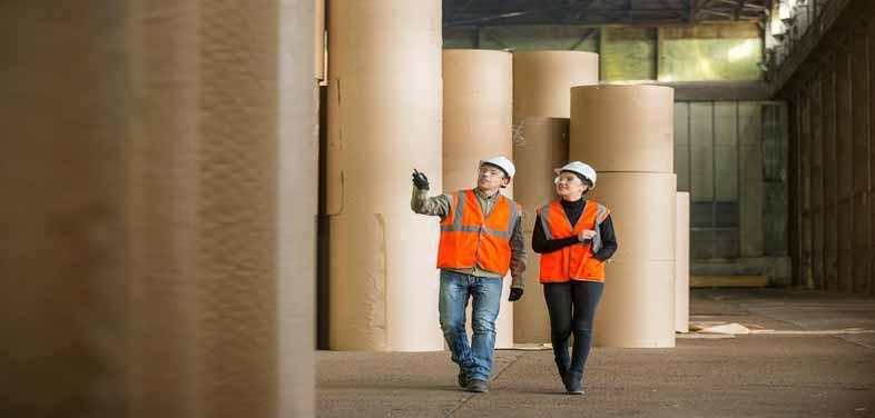 paper board industry